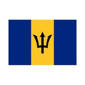 Barbados bb 3x5 polyester nylon flag